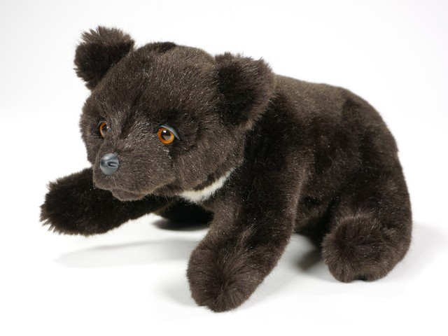 Asiatic Black Bears Piutr 232
