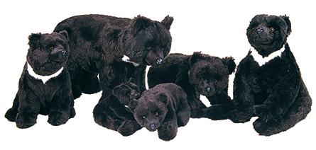 asiatic black bears piutrè